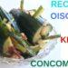Recette de Kimchi de concombre